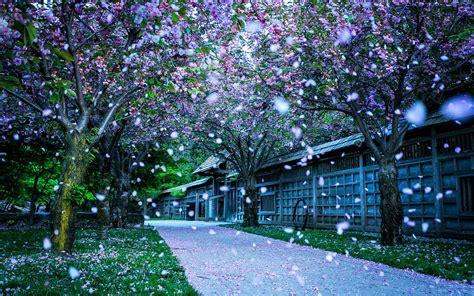 scenery wallpaper p  wallpaper laptop hd