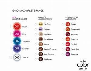 Haarfarbe Auf Rechnung Bestellen : revlon professional nutri color complete range haarfarbe pinterest haarfarbe kaufen und ~ Themetempest.com Abrechnung