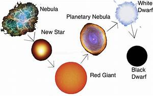 Nebula Star Life Cycle (page 2) - Pics about space