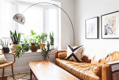 Images Of Living Room Plants by 15 Plant Filled Living Rooms For Serious Decor Inspiration