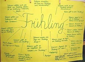 Entstehung von niederschlag unterricht