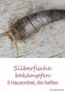 Silberfische Bekämpfen Tipps : silberfische bek mpfen 5 hausmittel gegen silberfischchen hausmittel haushalte und ~ Markanthonyermac.com Haus und Dekorationen