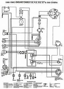 Bayliner Boat Wiring Diagram