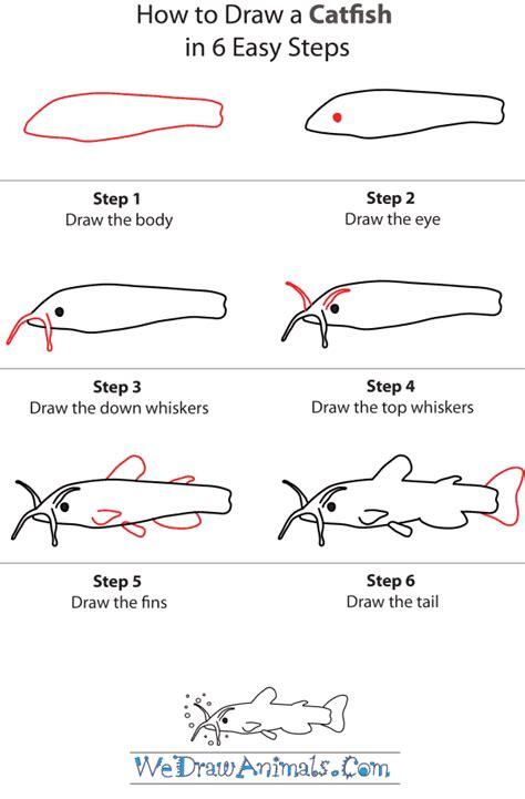 draw  catfish