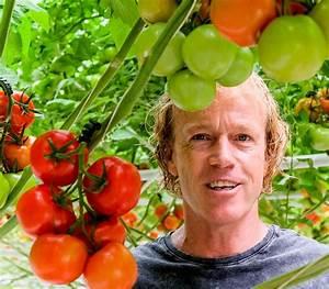 Bester Dünger Für Tomaten : tomatenzucht alles f r den geschmack annemarie ~ Michelbontemps.com Haus und Dekorationen