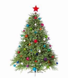 Christmas Tree Fire Safety - AmeriClean Inc
