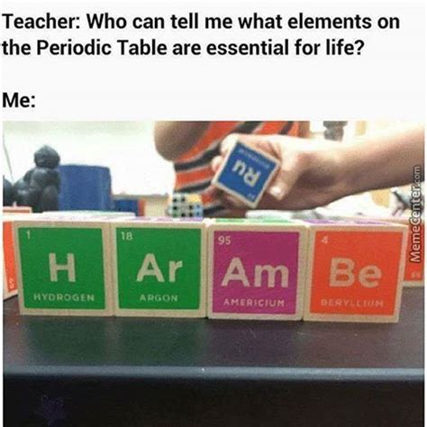 Table Meme - periodic table memes best collection of funny periodic table pictures