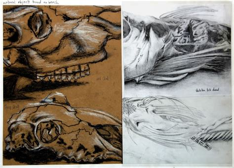 International Gcse Art Sketchbook Coursework Project