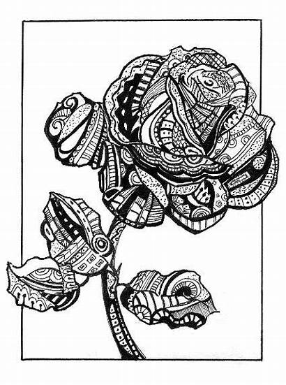 Abstract Rose Pen Ink Flower Drawing Drawings