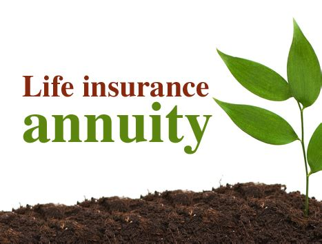 annuityf life insurance quotes annuity