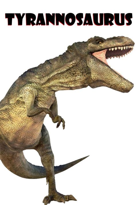 Maybe you would like to learn more about one of these? Dinosaur Flash Cards - FREE! for Android - APK Download