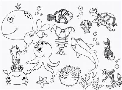 Coloring Pages Sea Under Printable