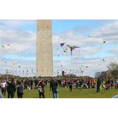 Blossom Kite Festival - National Cherry