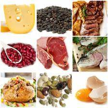 Protein and Carbohydrate Content in Foods
