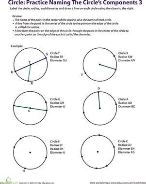 practice naming a circle s components 3 worksheet education com