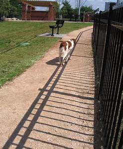 Downtown Dog Park Benefield Richters