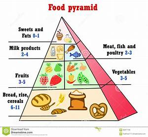 Healthy Food Eating Pyramid  U2013 Bisnis Perikanan