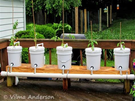 homemade hydroponic systems pvc pipe homemade ftempo