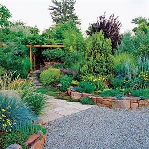 Drought Tolerant Plant Landscaping