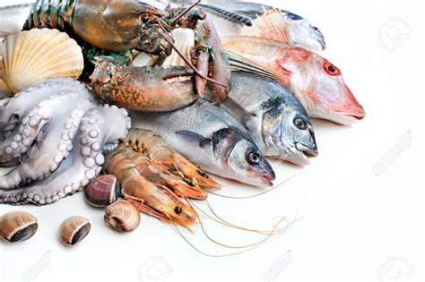 where to get fresh seafood fresh seafood bowt tunisie