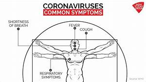 What Is Coronavirus  Here Is Your Complete Visual Guide