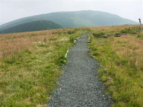 Photo Gallery: Roan Mountain Hiking