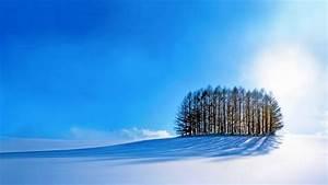 Wallpaper, Trees, Sky, Snow, Winter, 4k, Nature, 17402