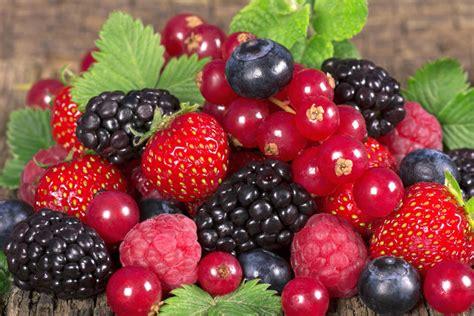 Zbuloni 11 arsyet pse frutat e pyllit janë ndër ushqimet ...