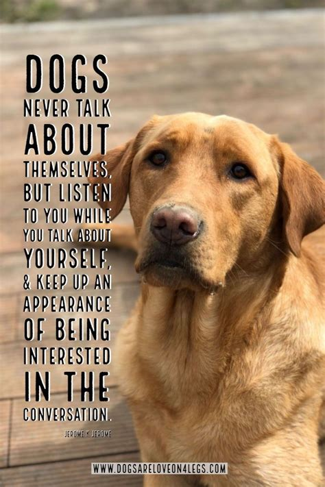 dog quote dogs  talk   dog dog