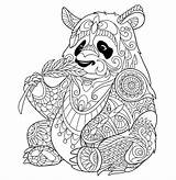 Bamboo Coloring Pages Panda Eating Getdrawings sketch template