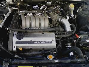 1998 Nissan Maxima - Other Pictures