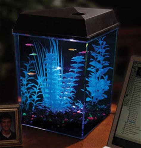 api aquaview corner aquarium kit with led lighting and power filter ebay