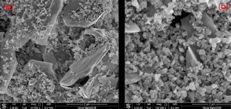 sem images   carbon film consisting  carbon black nanoparticles  scientific