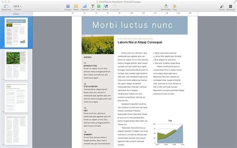 Mac Brochure Template by Mac Brochure Templates High Professional Templates