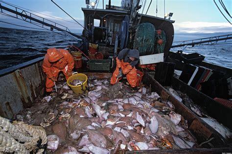 info  graduate degree programs  fishery management