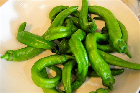 green chili pepper saut 233 ed sweet green chili peppers