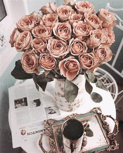 Aesthetic Rose Pretty Classy Dark Flowers Rich