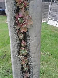 Vertikale Gärten Selber Machen : dachwurz s ule garten pinterest dachwurz g rten und betonieren ~ Bigdaddyawards.com Haus und Dekorationen