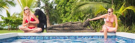 costa rica yoga retreat upcoming retreats  blue osa