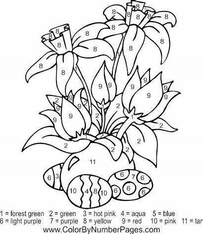 Paint Number Coloring Pages Adults Printable Getcolorings