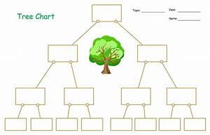 Decision Tree Diagram Ks1