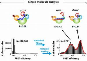 Molecules   Free Full-Text   A Starting Point for ...