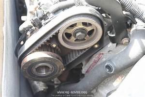 Lexus Gs300 Timing Belt Markssuzuki Timing Belt
