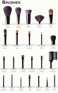 41 Best Makeup Brushes for 2019  Build the Perfect Makeup