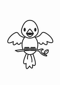 Malvorlage Vogel Ausmalbild 17610