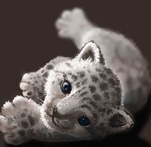 Baby snow leopard by Athena-Erocith on DeviantArt