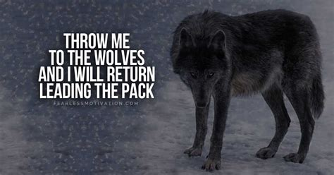 Alpha Wolf Wolf Pack Wallpaper by 20 Strong Wolf Quotes To You Up Wolves Wolfpack