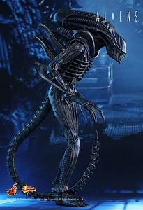 READY! HOT TOYS OFFICAL 1986 ALIENS ALIEN WARRIOR 14 ...