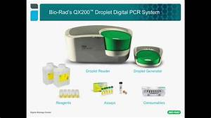 Droplet Digital™ PCR for Gene Expression and MicroRNA ...