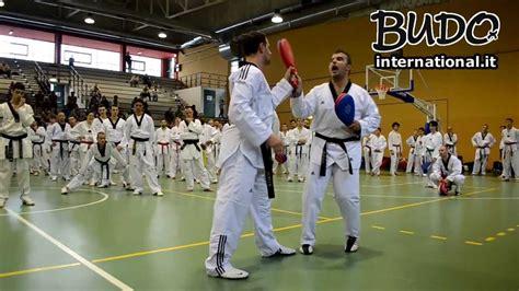 carlo molfetta stage taekwondo cosa fare e non fare nel taekwondo giugno2013